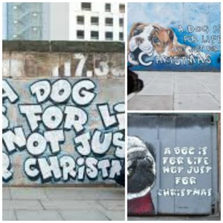 Slogan on the street: Leading street artists celebrate the 35th ...