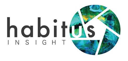 Bringing research to life with stunning depth and colour. How a group of fresh minds from London are changing the game with a new initiative – habitus Insight Ltd