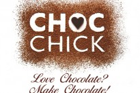 Latest in string of awards caps phenomenal year for CHOC Chick