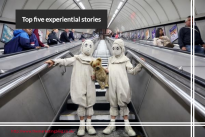 Hotcow : Top five experiential stories of the week .. Cadbury, Apple, Bombay Sapphire etc.