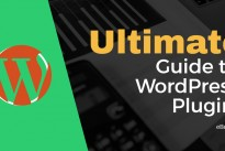 An overview of the best and most useful WordPress plugins –  ebook