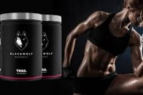 BlackWolf, the new all-in-one workout formula, launches exclusively on the MoreNiche affiliate network