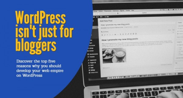 Discover the top five reasons why you should develop your web empire on WordPress