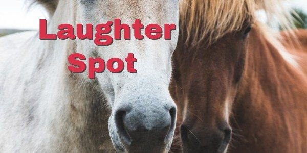 "Laughter Spot : The horse says "" I won the Oaks, St. Leger and the Derby"""