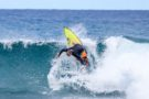 Surfing : Celebrate the beaches and waves that we all love