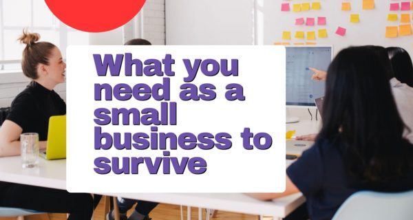 What you need as a small business to survive