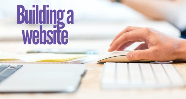 How building a website will help your local pest control business